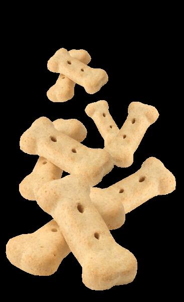 Human-grade dog biscuits